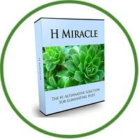 H-Miracle